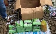 Gần 50kg ma túy ngụy trang trong thùng trái cây từ Campuchia về Sài Gòn