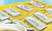 Bắt đối tượng vận chuyển hơn 86.000 USD qua biên giới