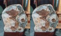 Độc đáo tảng đá có hình bản đồ Việt Nam