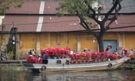 Dập dềnh chợ hoa Tết ở Bến Bình Đông