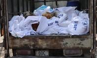Phát hiện xe tải vận chuyển gần 400kg gà chết