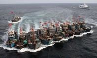 """Hàn Quốc tố hàng trăm tàu Trung Quốc """"tận diệt hải sản"""" trên Hoàng Hải"""