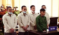 Lâm Đồng: Hơn 44 năm tù cho 5 bị cáo chuyên trộm lan đột biến