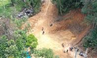 Phá rừng phòng hộ làm đường vào thủy điện Nước Long