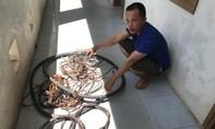 Bắt kẻ gây ra 21 vụ trộm thiết bị điện lưới, thiệt hại 180 triệu đồng