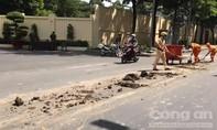 TPHCM: Trích xuất camera xử lý tài xế làm đổ bùn đất xuống đường