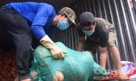 UBND TP.Đà Lạt tặng 60 tấn rau củ cho bà con vùng dịch TPHCM, Bình Dương