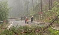 Lâm Đồng: Mưa đá, lốc xoáy gây thiệt hại nghiêm trọng
