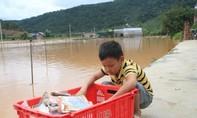 Lâm Đồng: Mưa lớn nhấn chìm hơn 100 hec ta rau, hoa màu