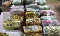 Công an Đồng Nai phá đường dây ma tuý xuyên quốc gia, thu giữ 50kg 'hàng đá'