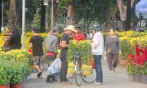 Hoa kiểng Tết khắp nơi ồ ạt đổ về Sài Gòn