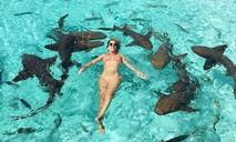 Nữ Blogger bị đàn cá mập cắn khi tạo dáng