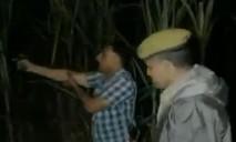 Cảnh sát hết đạn, giả tiếng súng nổ để bắt tội phạm