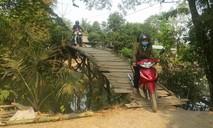 Cần một cây cầu cho hàng trăm hộ dân ở Đồng Tháp