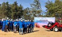 Novaland góp phần gìn giữ môi trường sinh thái biển tại Phan Thiết