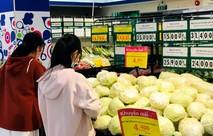 Siêu thị Co.opmart, Co.op Food giảm giá bắp cải Đà Lạt chưa từng có
