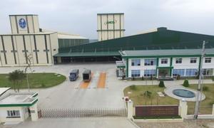 Hoạt động đầu tư của Masan tại tỉnh Nghệ An