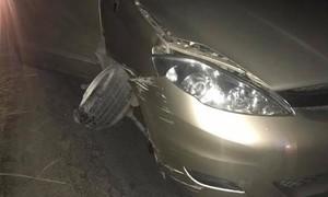 Nhật Kim Anh bị tai nạn khi đi diễn ở Bến Tre
