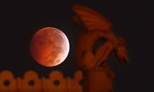 Ở Việt Nam có thể quan sát được 'mặt trăng máu' vào tối nay