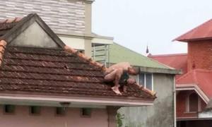 """Bé 2 tuổi bị cha """"ngáo đá"""" bồng lên mái nhà ném xuống đất"""