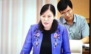 Yêu cầu kiểm tra lại bản án phúc thẩm Nguyễn Khắc Thuỷ