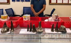 12 khúc sừng tê giác trong hộp sữa ở sân bay Tân Sơn Nhất