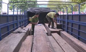 Phát hiện xe tải vận chuyển 31 hộp gỗ lậu trong đêm