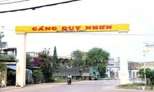 Kiến nghị thu hồi 75,01% cổ phần Cảng Quy Nhơn về sở hữu Nhà nước