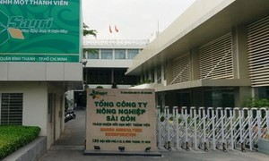 Sagri chuyển nhượng dự án nhà ở tại quận 9 không qua đấu giá