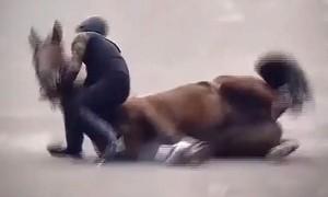 Clip người lính cưỡi ngựa phản ứng cực nhanh thoát chết