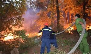 Người gây ra vụ cháy rừng kéo dài 3 ngày bị phạt 7 năm tù