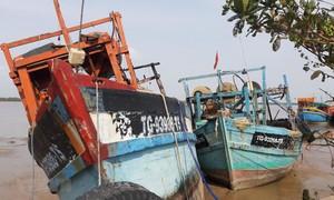 5 tàu cá đánh bắt xa bờ về nghỉ Tết bị cháy rụi