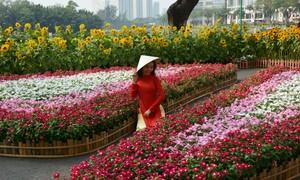 """Nô nức đi xem đường hoa trong """"phố nhà giàu"""" ở Sài Gòn"""