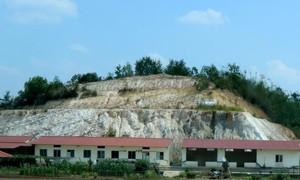 Phạt doanh nghiệp 210 triệu đồng do chiếm đất rừng xây nhà xưởng