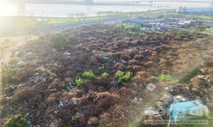 """Bức xúc vì bãi rác """"khủng"""" ở Đà Nẵng ảnh hưởng người dân"""