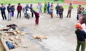 Hàng chục người dân vây bắt 2 anh em cẩu tặc