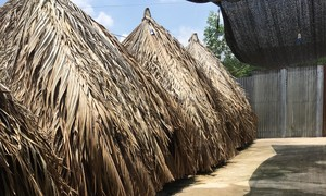 """Xóa sổ gần 70 quán cà phê """"ổ nhện"""" ở huyện Trảng Bom"""