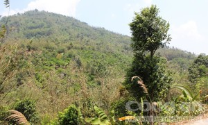Kỳ 1: Ngọn đồi kỳ lạ ở Thất Sơn