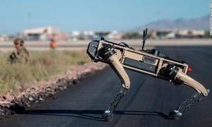 """Không quân Mỹ đưa các """"robot chó"""" vào tập trận, như phim viễn tưởng"""