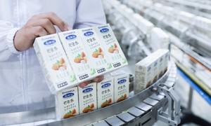 Tin vui về lô sữa xuất khẩu đầu năm từ Vinamilk
