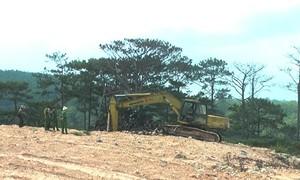 Đà Lạt: Bãi rác chôn lấp trái phép sạt lở vùi lấp vườn tược của dân