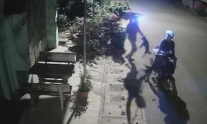"""Clip """"cẩu tặc"""" chích điện trộm chó trong 15 giây"""