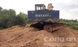 Khai thác cát lậu ở biên giới, bị phạt 125 triệu đồng