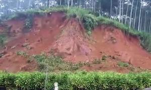 Người đàn ông phản ứng mau lẹ thoát chết trong vụ lở đất