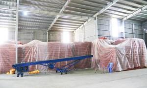 Phát hiện 120 tấn đậu xanh không rõ nguồn gốc