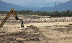 Thi công nhà máy điện mặt trời phá hơn 5ha rừng phòng hộ