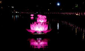 Các ngôi chùa ở Sài Gòn lung linh đón lễ Phật Đản