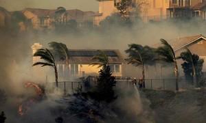 Hơn 100.000 người ở California phải sơ tán vì cháy rừng