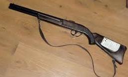 Lấy báng súng đập rắn khi đi săn, bị đạn xuyên qua trán tử vong