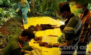 Hé lộ nguyên nhân vụ 3 bà cháu bị sát hại chôn dưới gốc cây rúng động